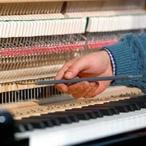 Pecar Gorizia - Un pianoforte in lavorazione
