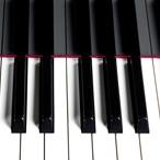 Pecar Gorizia - Particolare di una tastiera di un pianoforte