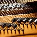 Pecar Gorizia - Particolare di un pianoforte a coda aperto